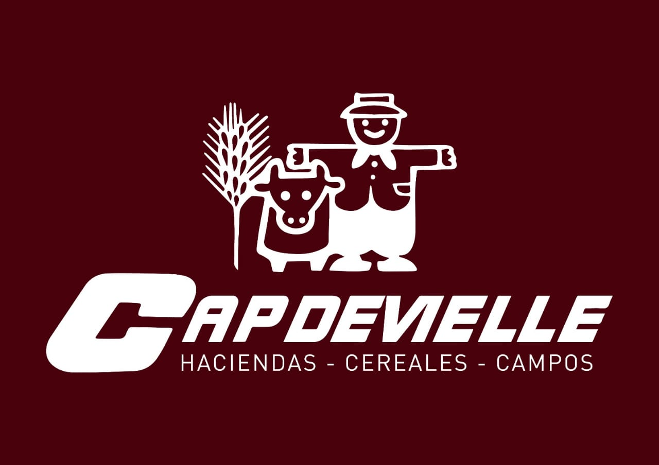 CAPDEVIELLE S.R.L.