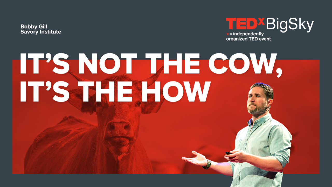 IT'S NOT THE COW, IT'S THE HOW | BOBBY GILL AT TEDX BIGSKY