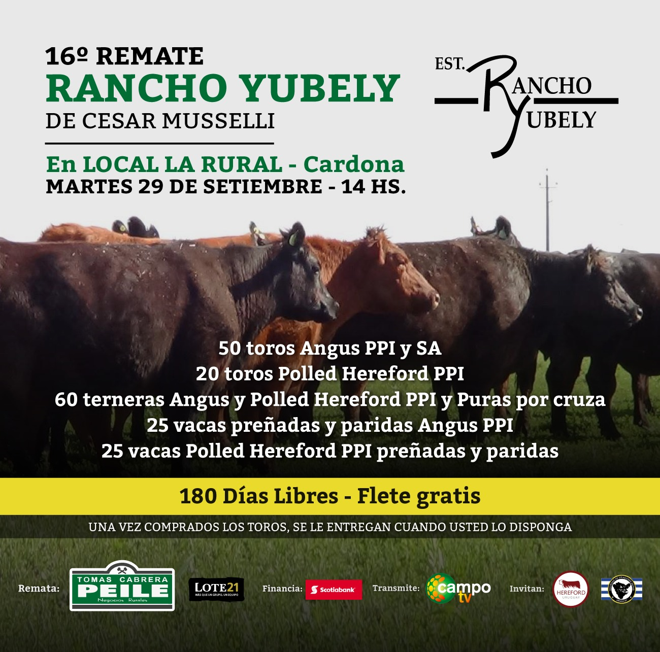 Afiche 16º Remate Rancho Yubely