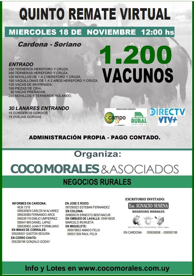 Afiche 5º Remate Virtual
