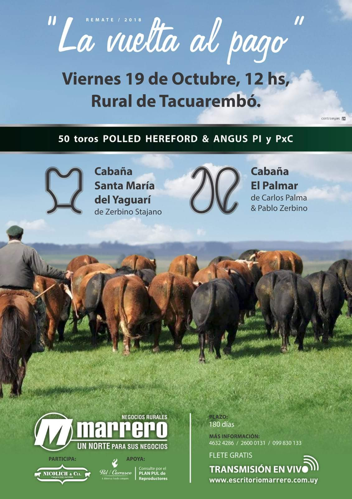 Afiche Vuelta al Pago | Polled Hereford y Angus