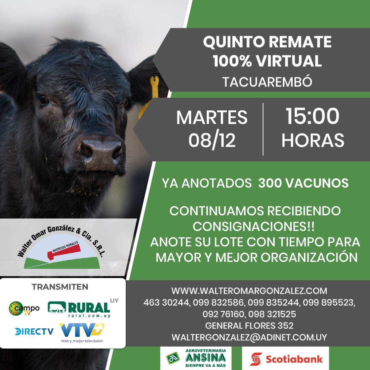 Afiche Quinta Remate Virtual