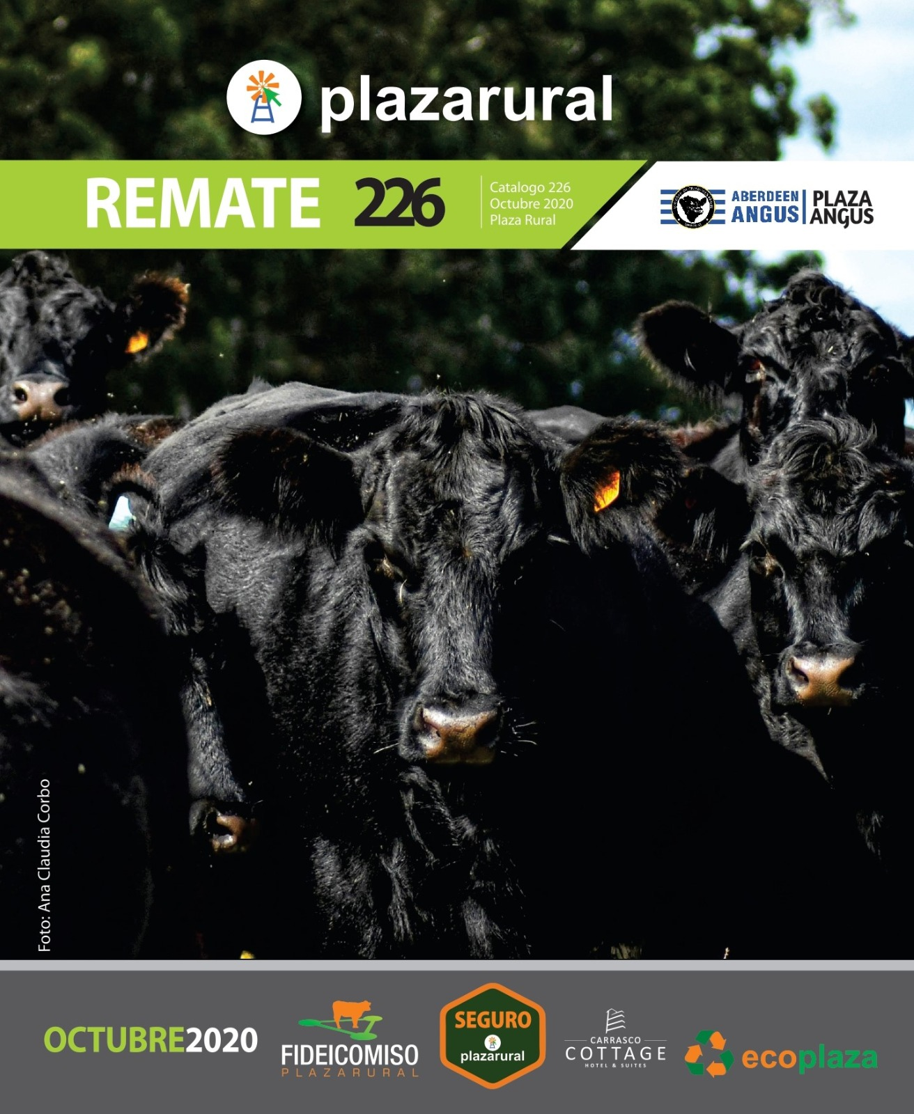 Afiche 226º Remate Plaza Rural