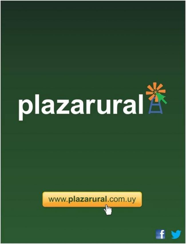 Afiche 232˚ Remate Plaza Rural
