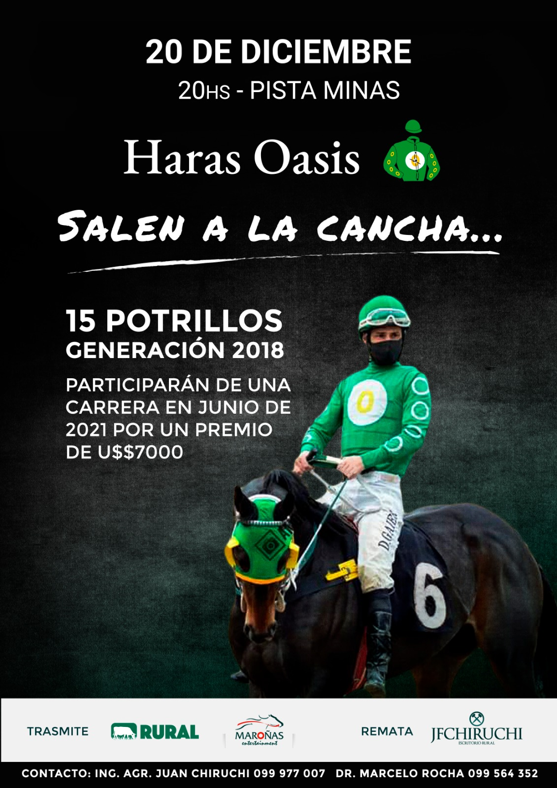 Afiche Harás Oasis