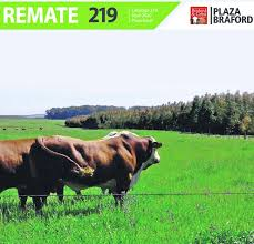 Afiche 219˚ Remate Plaza Rural